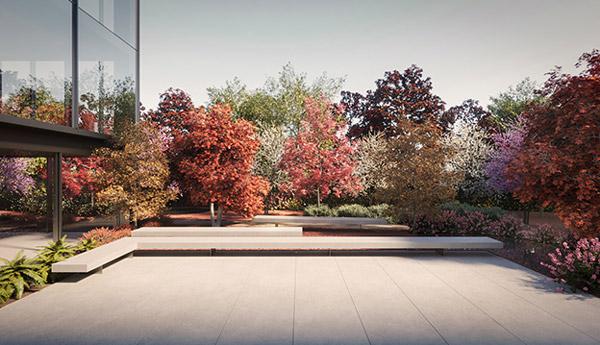 Edificio Botanic - Vista plaza